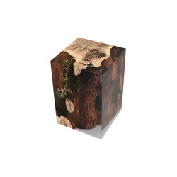 Undergrowth | Stump Stool Oak | Hocker | Alcarol