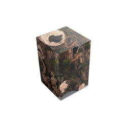 Undergrowth | Stump Stool Willow | Tabourets | Alcarol