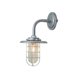 7677 Guard 60W Galvanised | General lighting | Original BTC