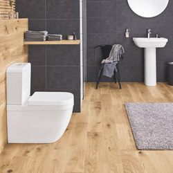 Euro Ceramic Floor standing back to wall WC | Toilets | GROHE