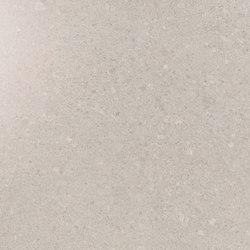 Kone silver | Carrelage céramique | Atlas Concorde