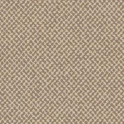 Hush | Upholstery fabrics | CF Stinson