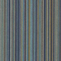 True Path with Agion® | Fabrics | CF Stinson