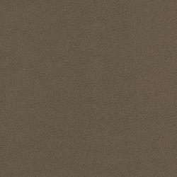 Sedona | Upholstery fabrics | CF Stinson