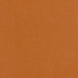 Volterra - HC | Fabrics | CF Stinson