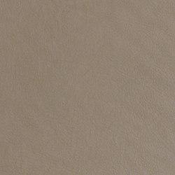 Moccasin | Upholstery fabrics | CF Stinson