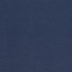 Sundance with Sta-Kleen™ | Upholstery fabrics | CF Stinson