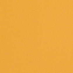 Verdure | Upholstery fabrics | CF Stinson