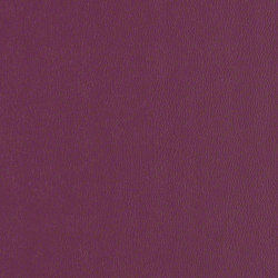 Rally | Upholstery fabrics | CF Stinson
