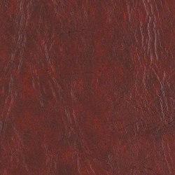 Rogue2 | Upholstery fabrics | CF Stinson