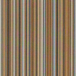 Promenade | Upholstery fabrics | CF Stinson