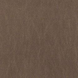 Simplicity | Upholstery fabrics | CF Stinson