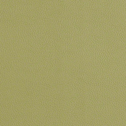 Cassidy | Upholstery fabrics | CF Stinson