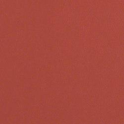 Avant | Upholstery fabrics | CF Stinson