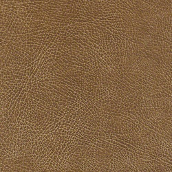 Mesa | Fabrics | CF Stinson
