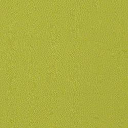 Rainier | Upholstery fabrics | CF Stinson