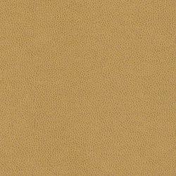 Modena | Upholstery fabrics | CF Stinson