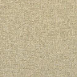 Rivera | Upholstery fabrics | CF Stinson