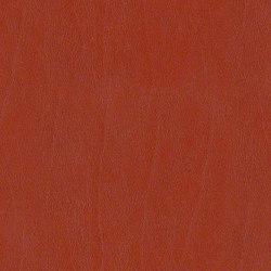 Cielo | Upholstery fabrics | CF Stinson