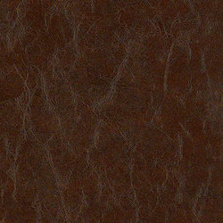 Sleek | Upholstery fabrics | CF Stinson