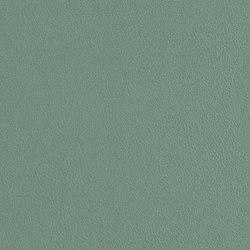 Scout | Upholstery fabrics | CF Stinson