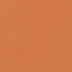 Citadel | Upholstery fabrics | CF Stinson