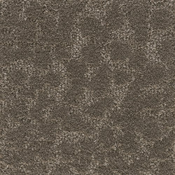 Pebble | Taupe Patina 803 | Rugs | Kasthall