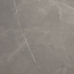 Storm Gris Natural SK Rect | Ceramic panels | INALCO