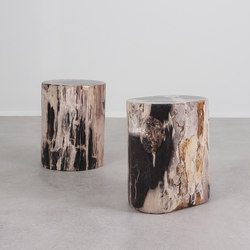 Dappled Petrified Wood Log Table | Tables d'appoint | Pfeifer Studio