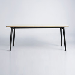 Salon Table - Rectangular | Tables de repas | True North Designs