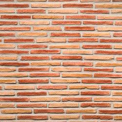 Ladrillo Multicolor | Piallacci pareti | Artstone