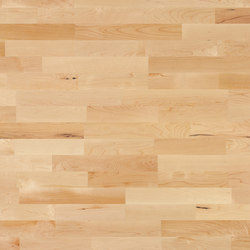 Multipark 10 Maple canadian 15 | Wood flooring | Bauwerk Parkett