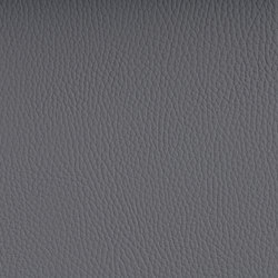 BELUGA DOVE GREY | Outdoor upholstery fabrics | SPRADLING