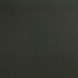 DOLCE POLYURETHANE MOSS | Fabrics | SPRADLING