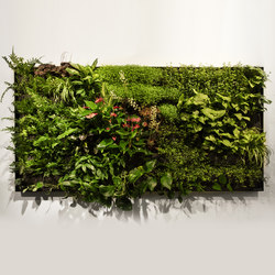 2M2 Green Screen | Sound absorbing wall art | Greenworks