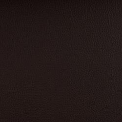 DELTA CHOCOLATE | Upholstery fabrics | SPRADLING