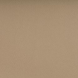 DELTA BEIGE | Tejidos tapicerías | SPRADLING