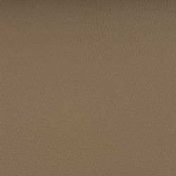 DELTA ARENA | Tejidos tapicerías | SPRADLING