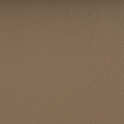 DELTA ARENA | Upholstery fabrics | SPRADLING