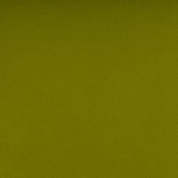 DELTA PISTACHO | Tejidos tapicerías | SPRADLING