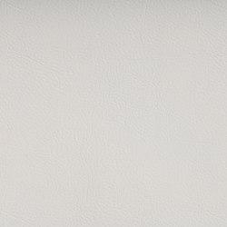 FINESSE PURE WHITE | Tejidos tapicerías | SPRADLING