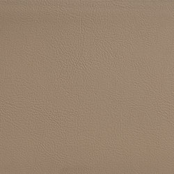 FINESSE TAUPE | Artificial leather | SPRADLING