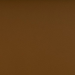 NUANCE COGNAC | Upholstery fabrics | SPRADLING