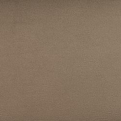 SAFFIANO PALLADIUM | Upholstery fabrics | SPRADLING