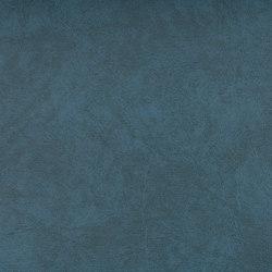 SIERRA C5 WASSER | Upholstery fabrics | SPRADLING