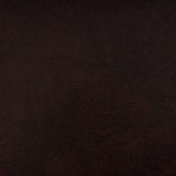 SIERRA C5 MOCCA | Upholstery fabrics | SPRADLING