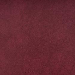 SIERRA C5 HEIDE | Upholstery fabrics | SPRADLING