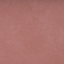 SIERRA C5 LACHS | Upholstery fabrics | SPRADLING