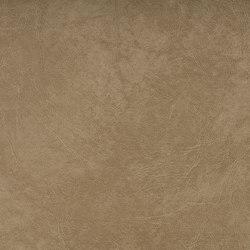 SIERRA C5 NEBEL | Upholstery fabrics | SPRADLING