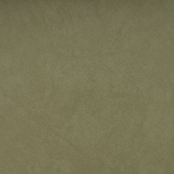 SIERRA C5 HELLGRÜN | Upholstery fabrics | SPRADLING
